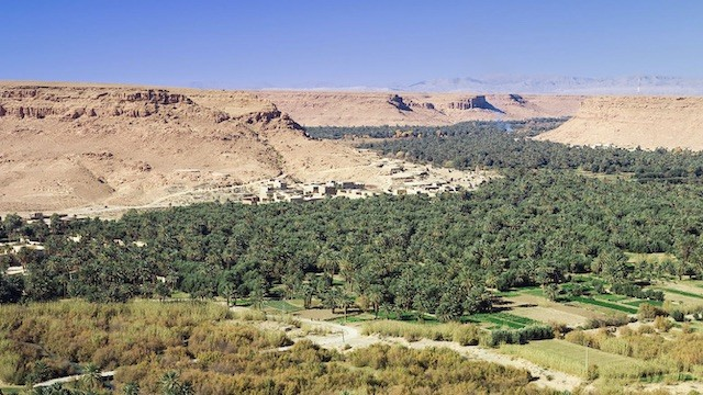 Ziz Valley tours Morocco